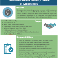 Advisory Board infographic