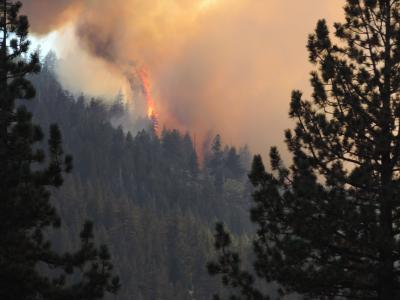 Photo of Eagle Fire