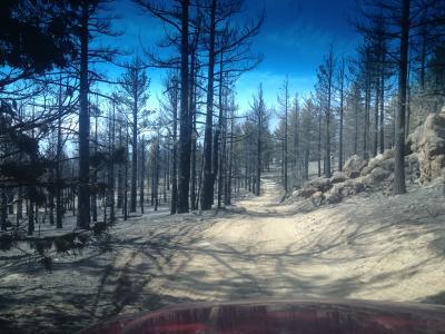 Walker Fire image