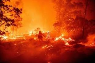 Creek Fire Image
